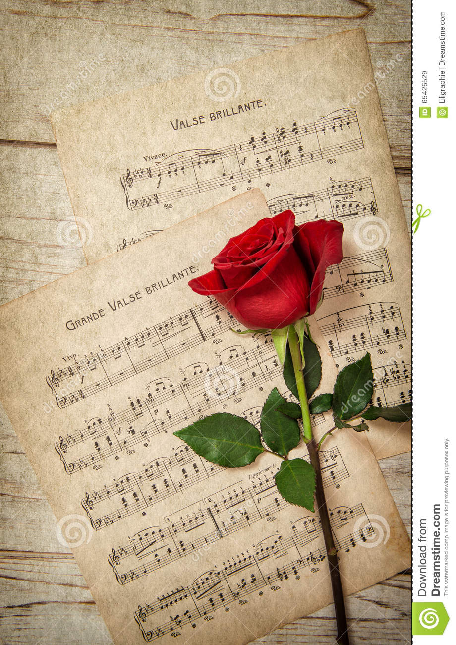 music notes backgrounds floral - photo #38