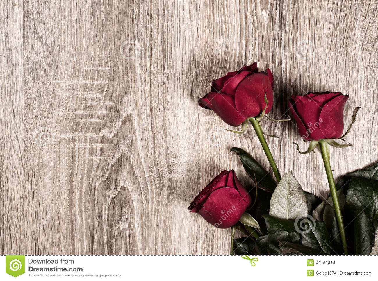 Red Rose Flower On Wood Background Stock Photo 49188474 Megapixl