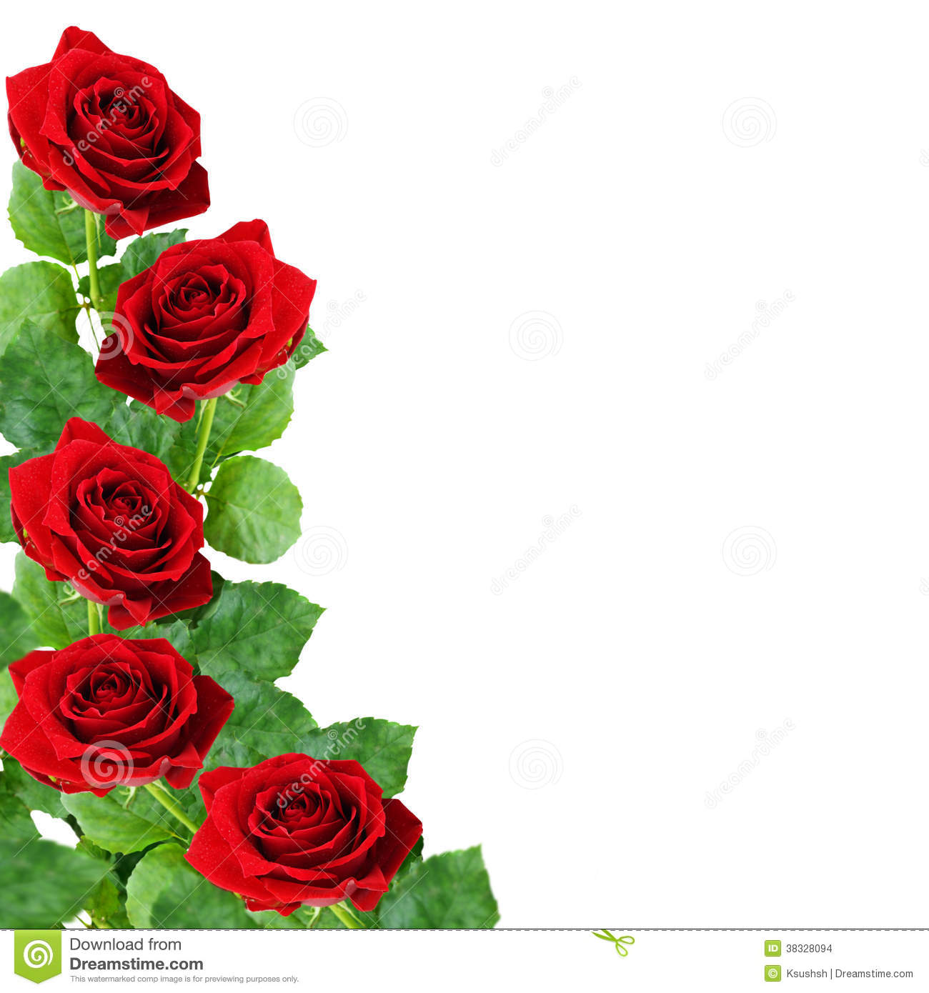 Red Rose Flowers Stock Photo Image Of Floral Nobody 38328094