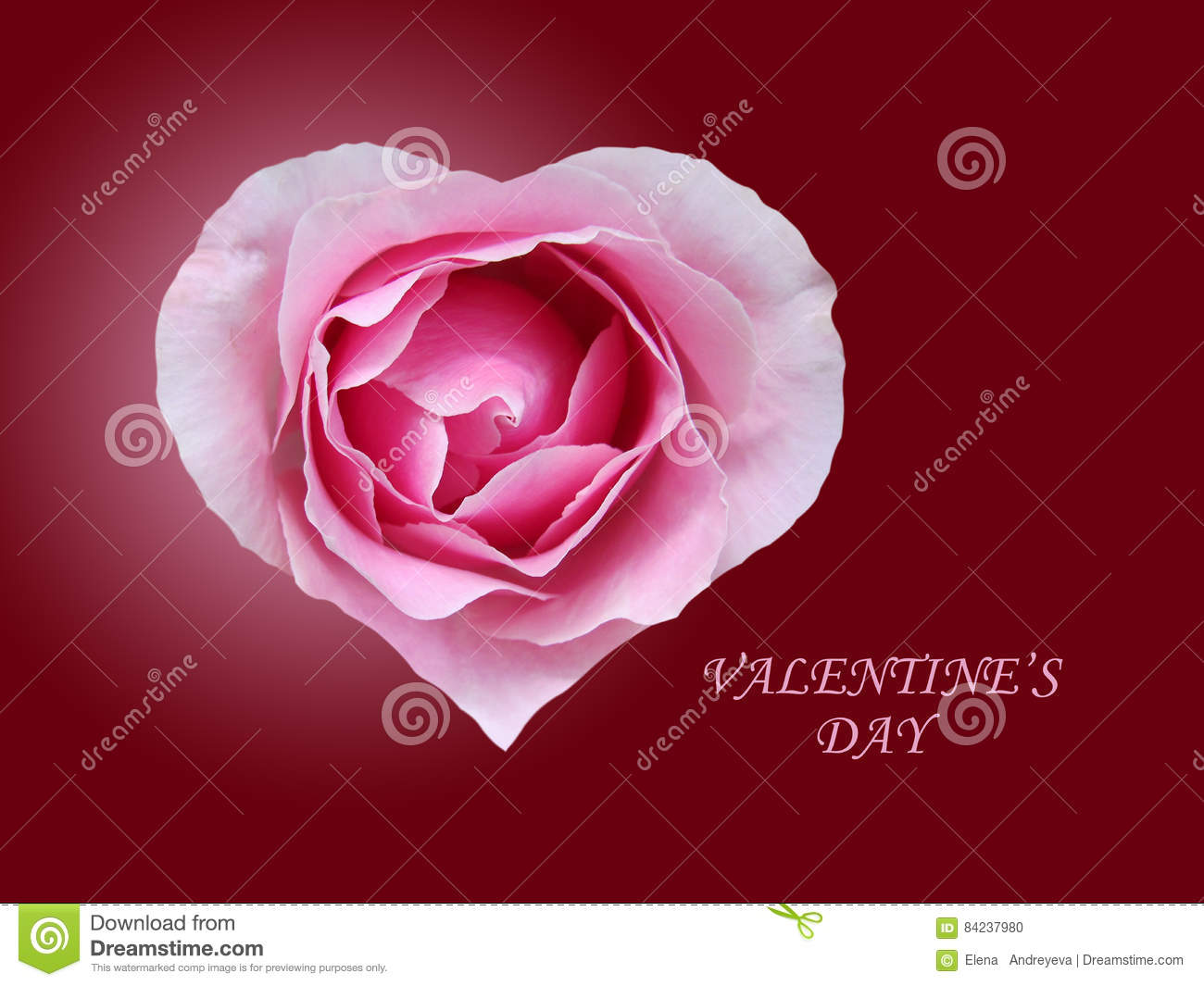 Download Red Rose In Form Heart Stock Photo Image Of Wallpaper