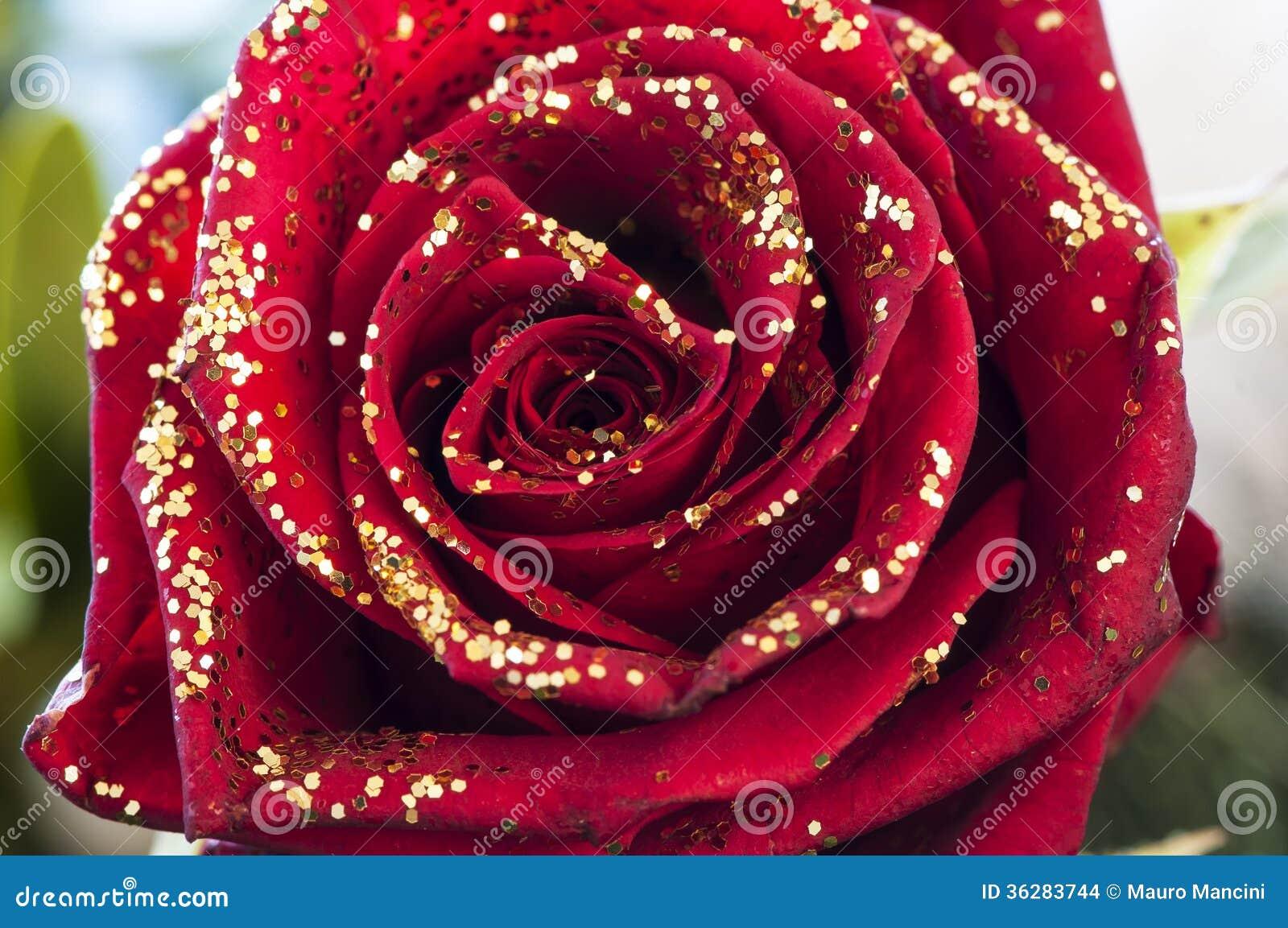red-rose-gold-glitter-36283744.jpg