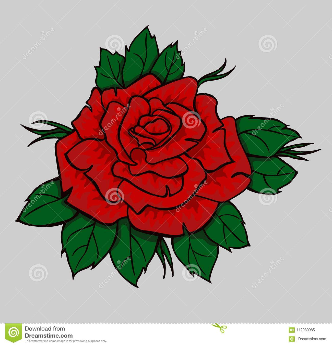 Red rose with green leaves. Isolated flower