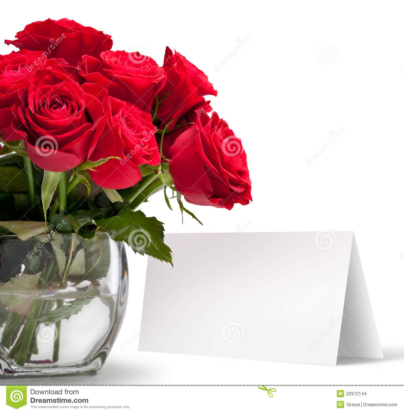 Red Rose With A Greeting Card Stock Photo Image Of Isolated