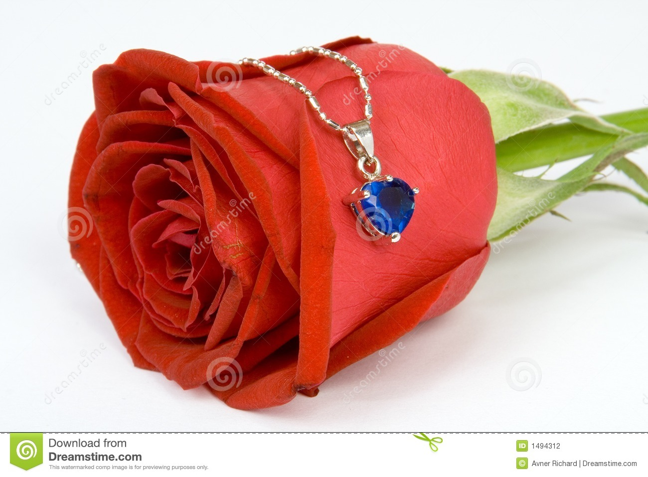 red rose with heart stock photo image of jewelery green 1494312
