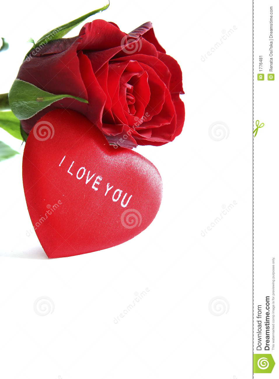Red Rose And Heart Stock Image Image Of White Love Romance 1776481