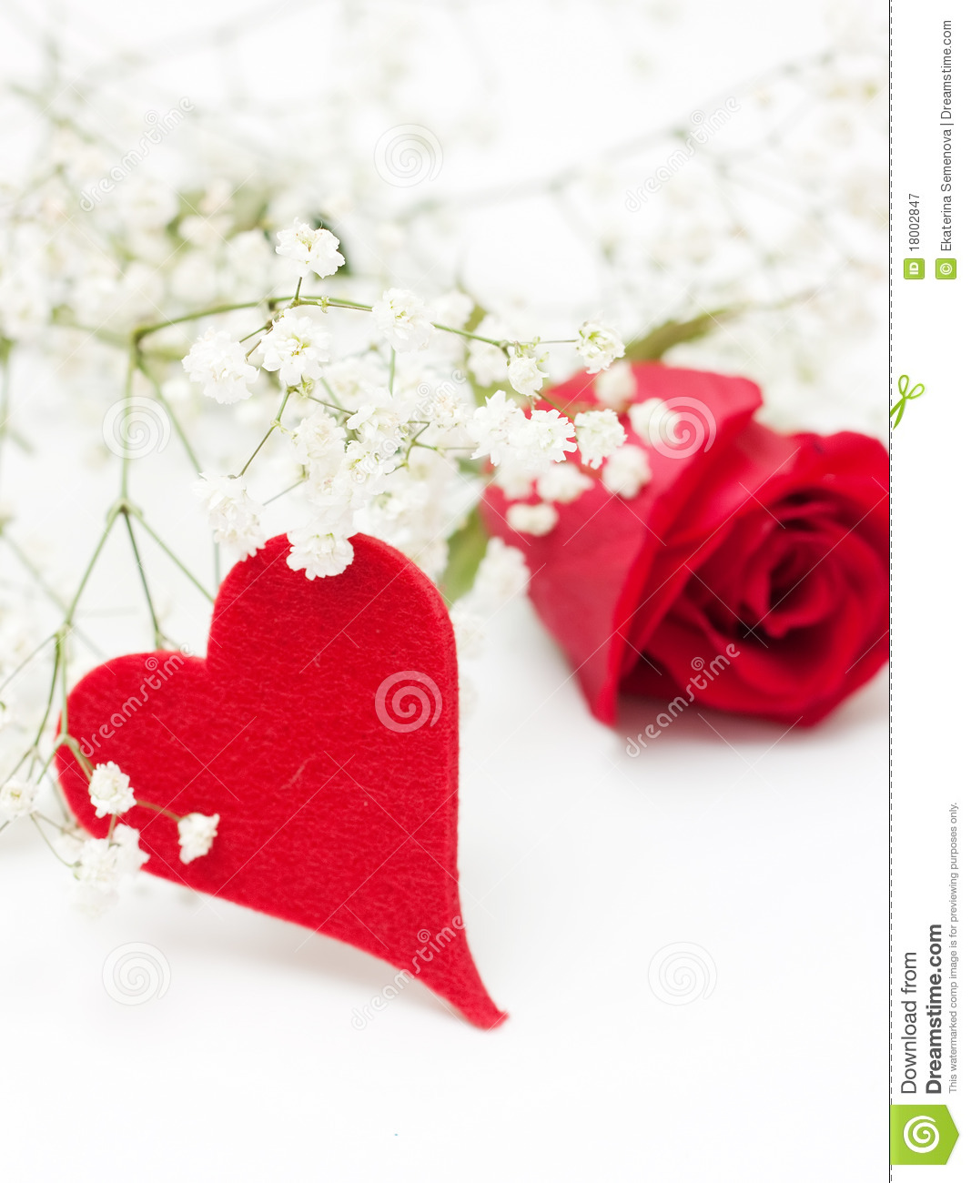 Red Rose With Heart Stock Image Image Of Romantic White 18002847