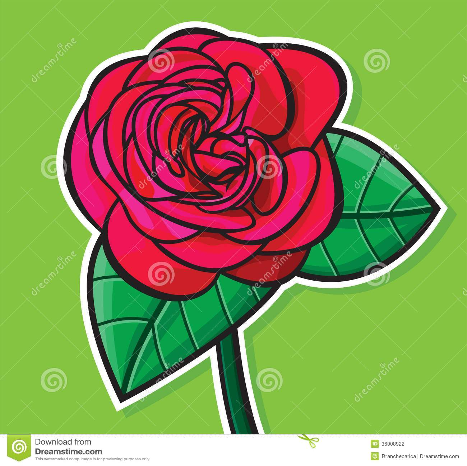 Rose Illustration Vector