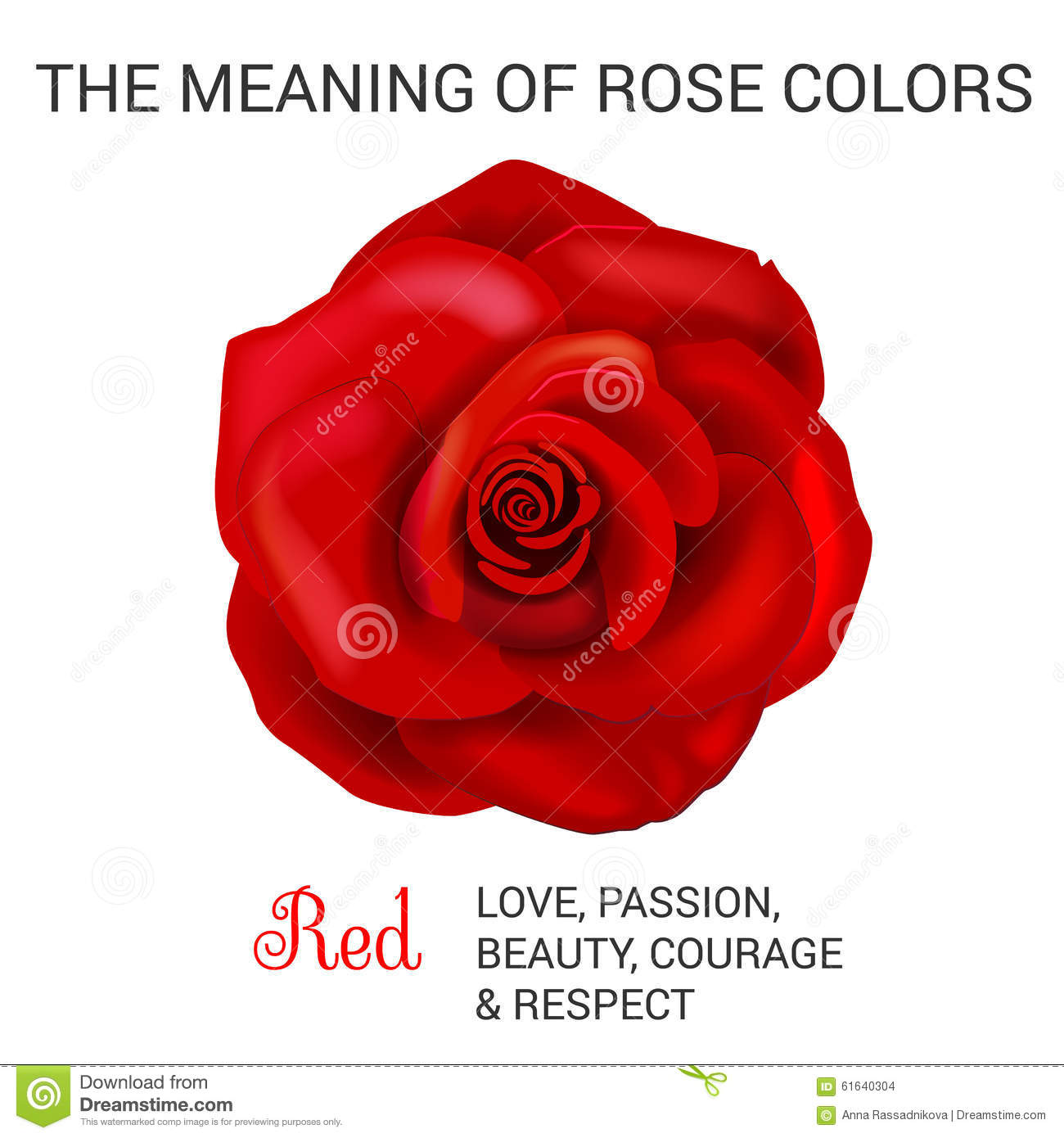Rose Flower Meanings by their Color Variety and Numbers