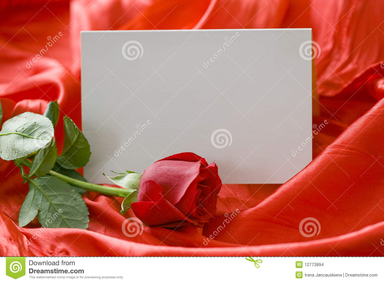 Red Rose And Invitation Card Stock Photo Image Of Color