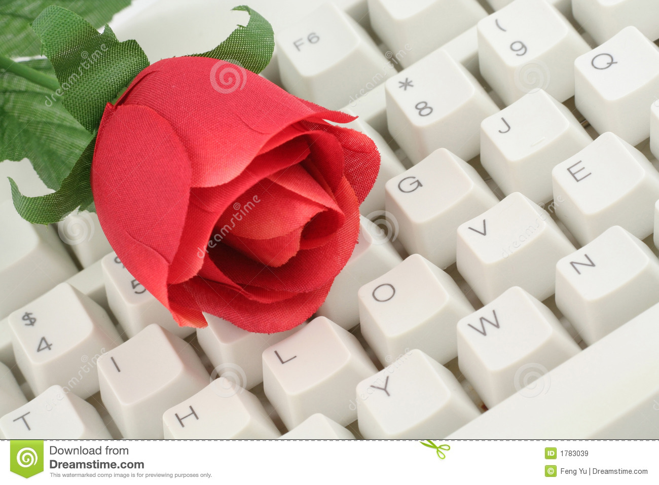 Red Rose And Keyboard Royalty Free Stock Images - Image: 1783039