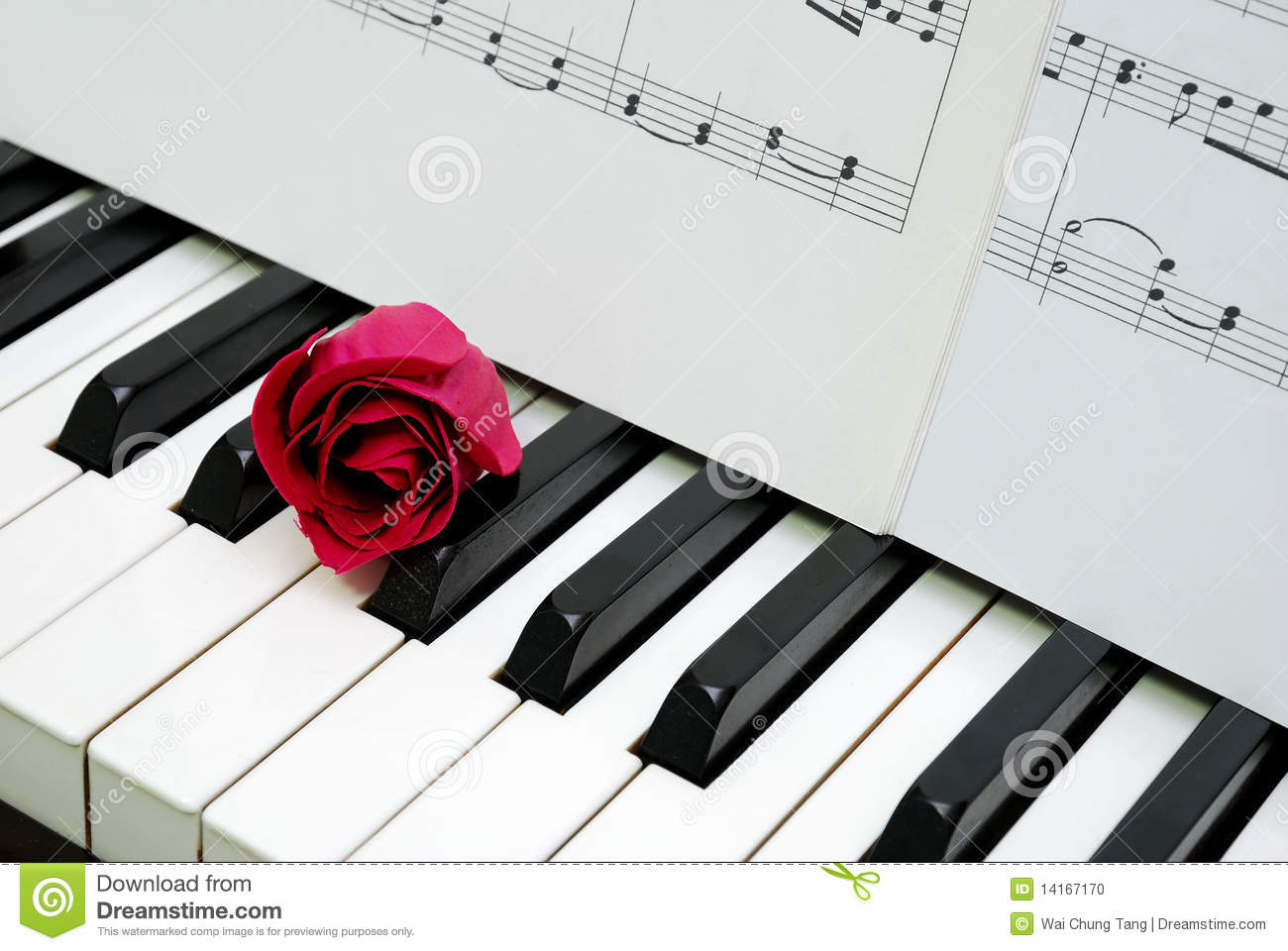 Flower Piano Sheet Music
