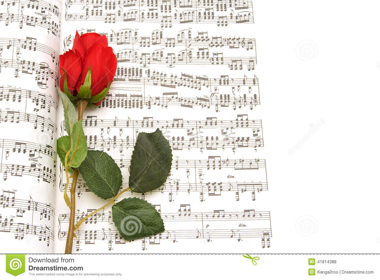 Red rose and note writing