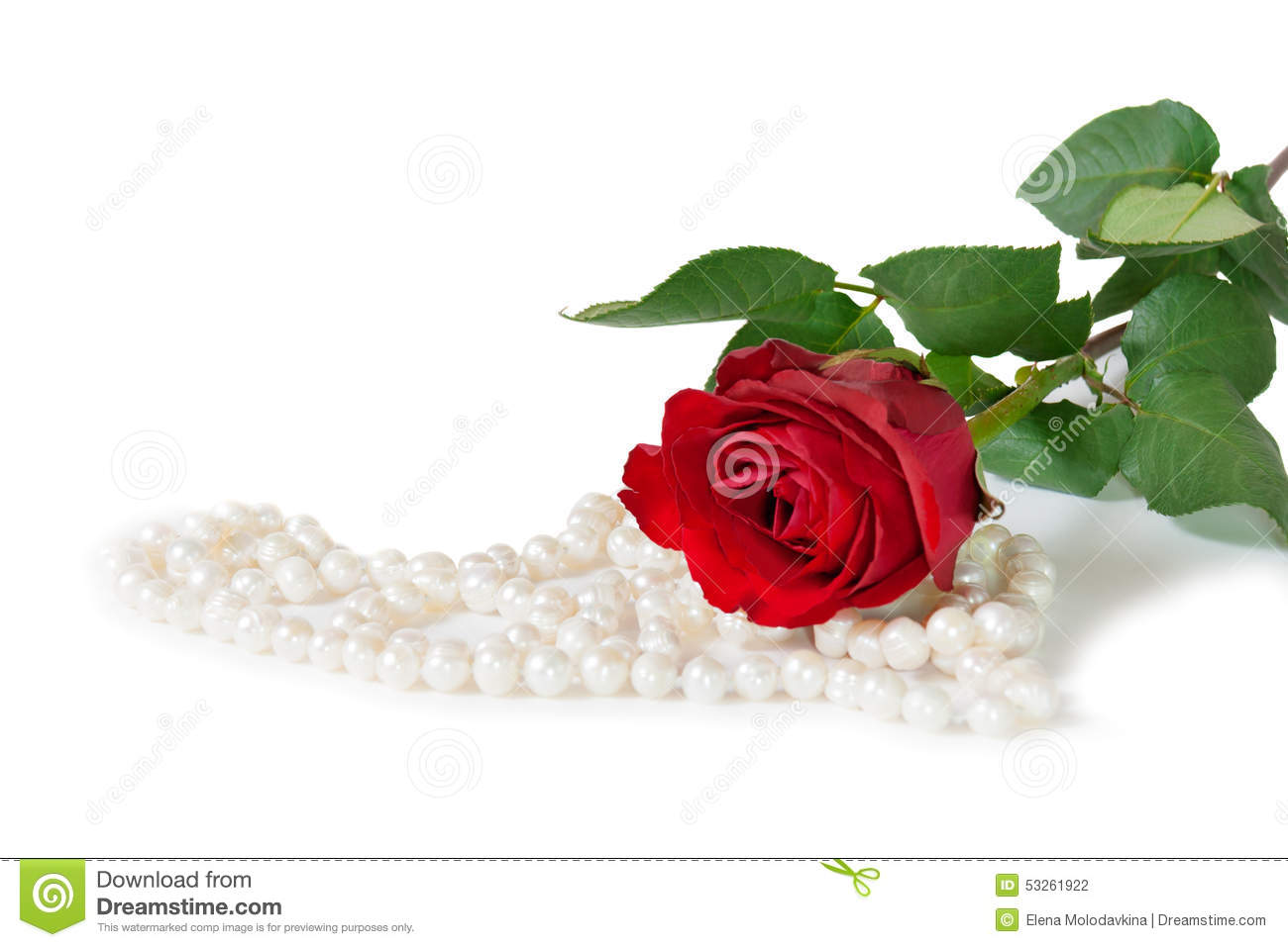 Red Rose With Pearl Bijouterie Necklace On White ...