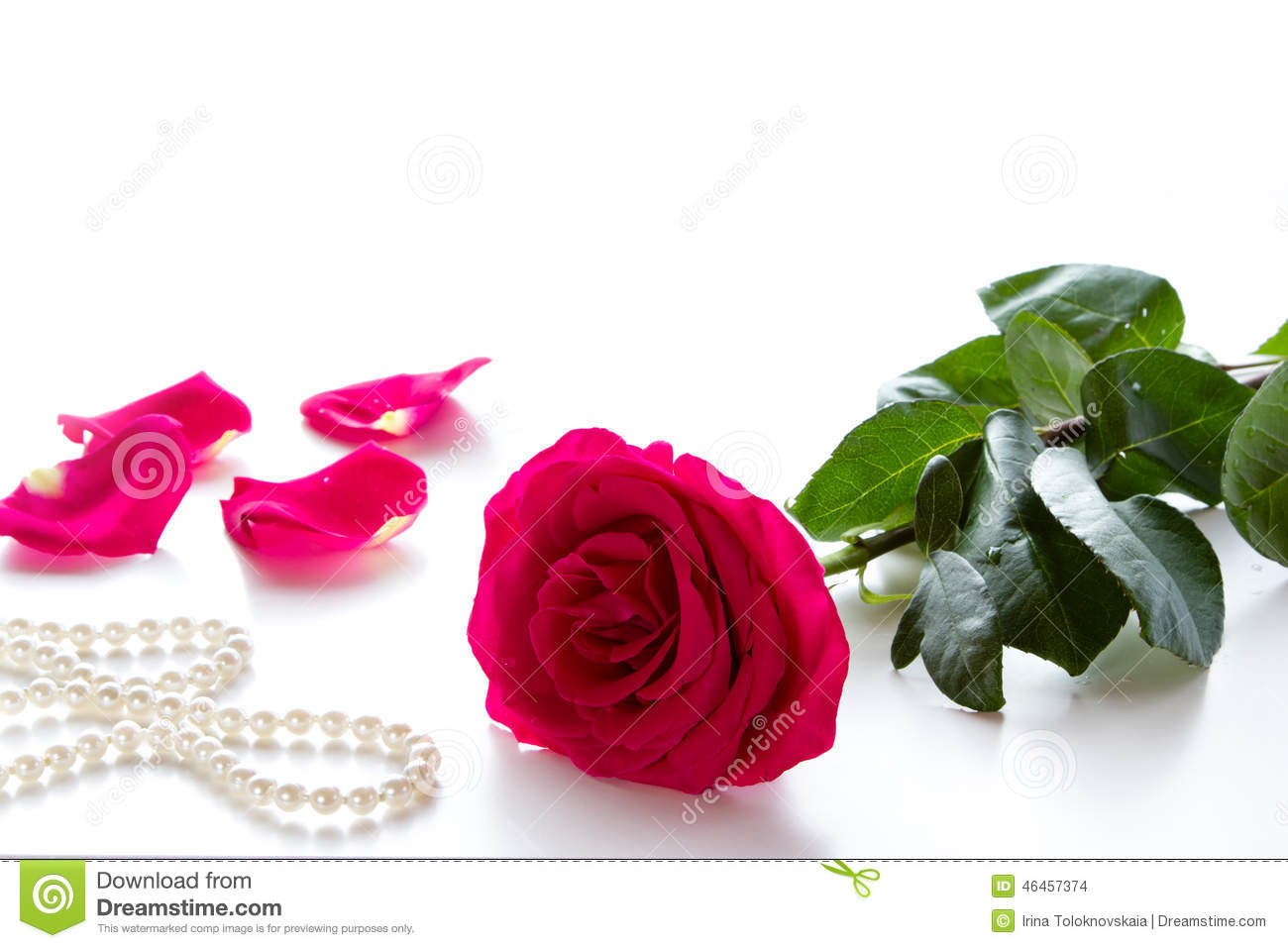 Red rose stock photo image of nature white plant birthday 46457374 red rose and pearl necklace on a white background flower on valentines day izmirmasajfo