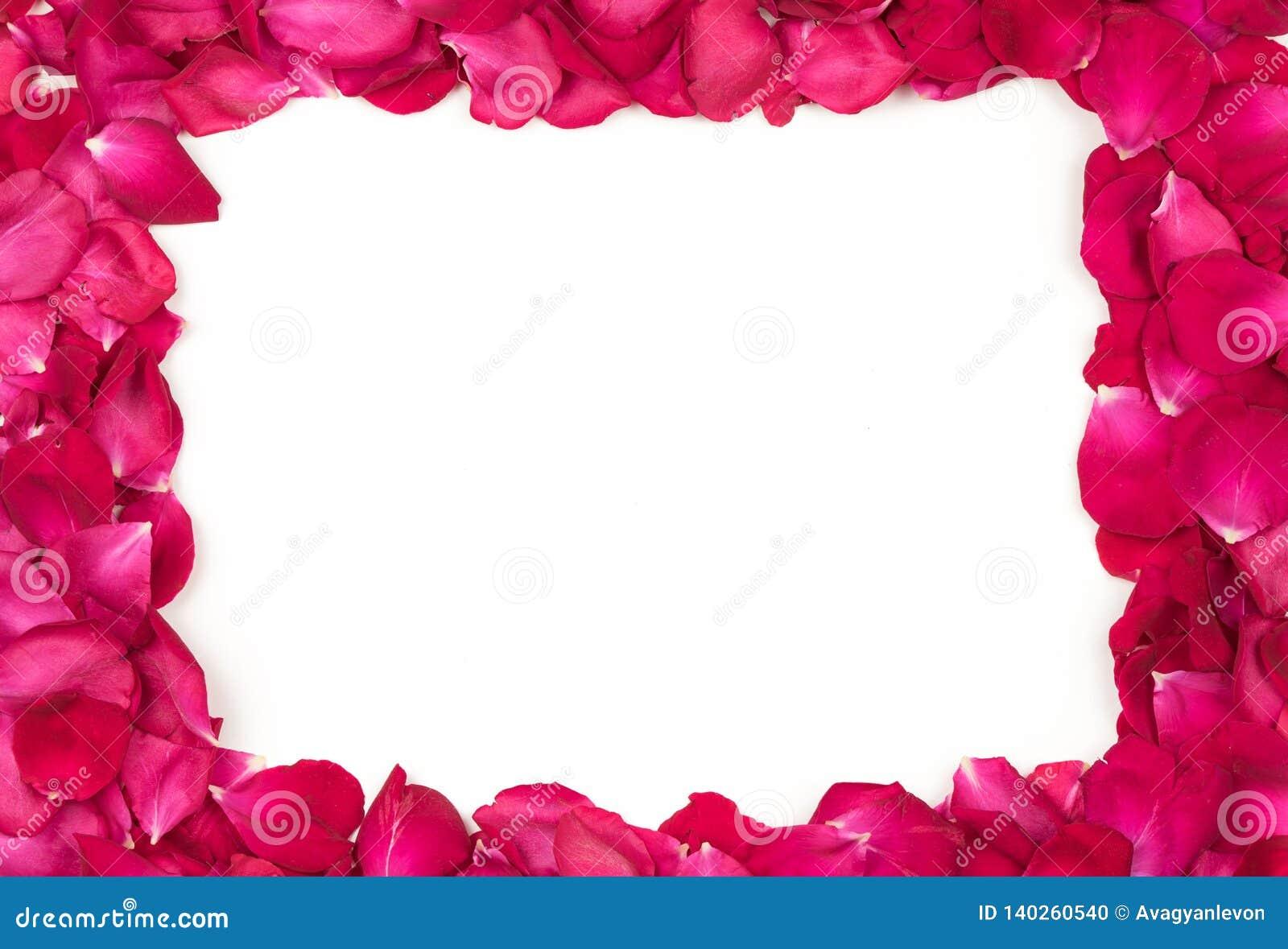 Red Rose Petals Border
