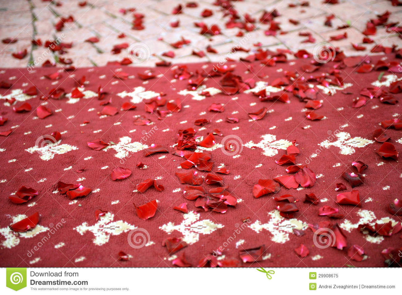 Petals On Carpet Stock Image Image Of Group Part Focus 29908675