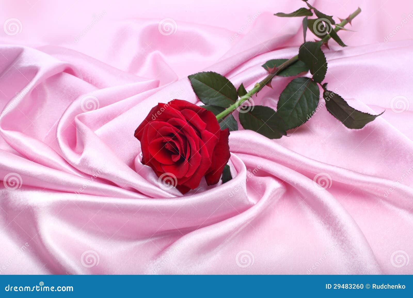 Red Rose On Pink Silk Stock Photo Image Of Wedding Shine