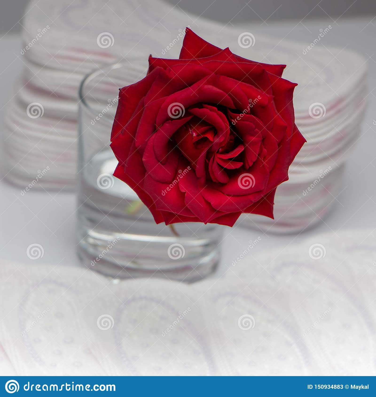 Red rose and sanitary pads. The concept of purity and freshness