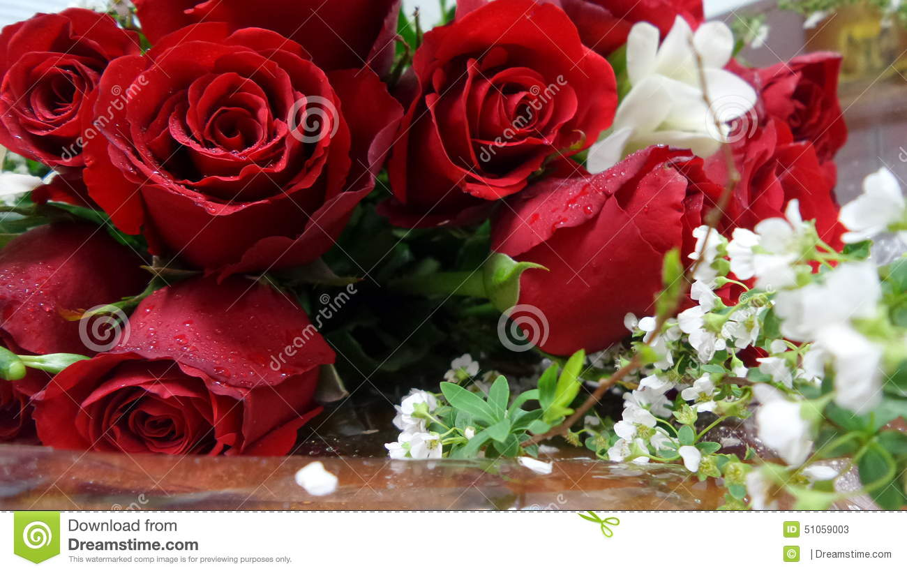 Red Rose And Small White Flower Bouquet Stock Image - Image of small ...