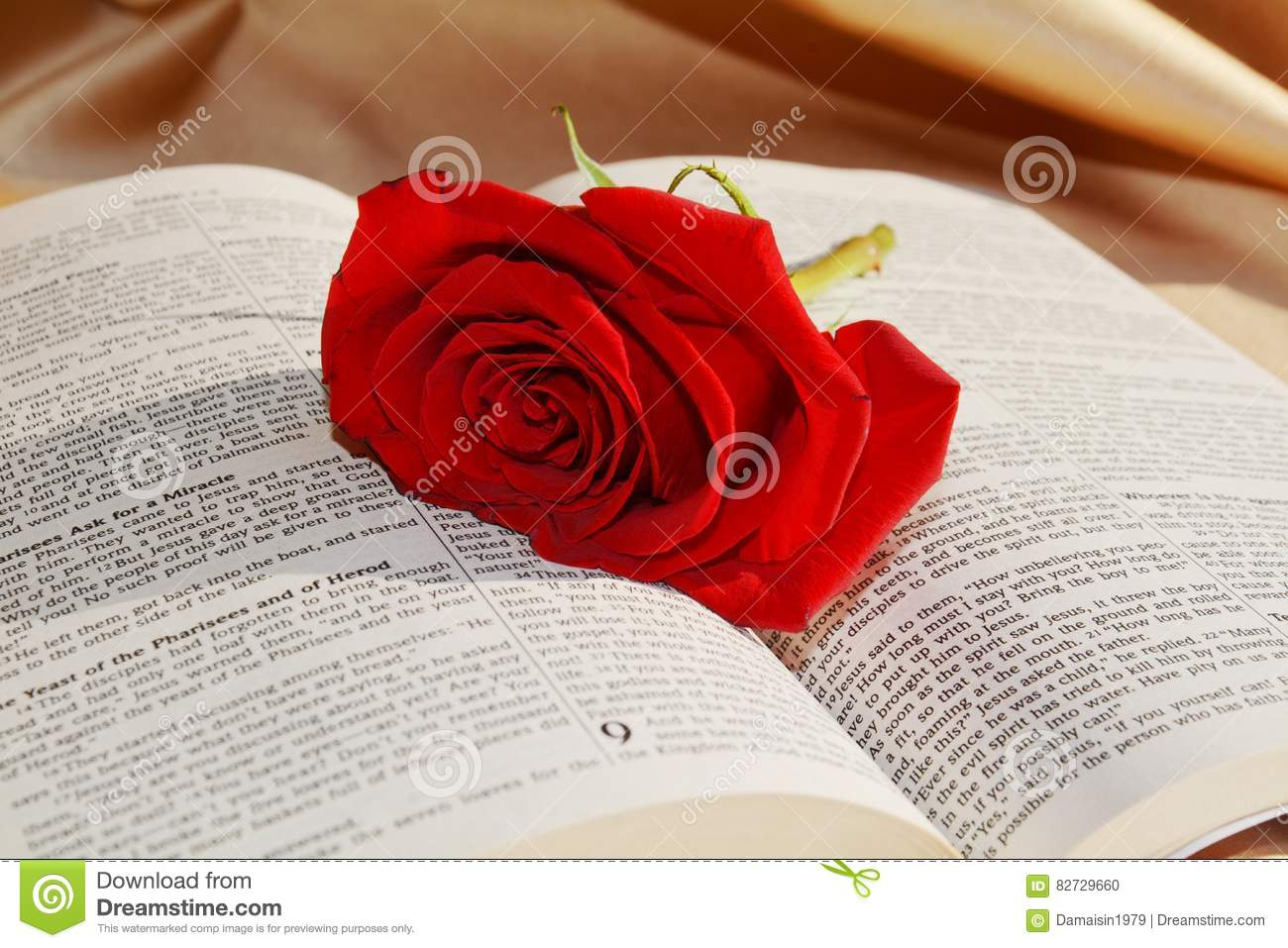 Red Rose Stock Photo Image Of Spirituality Suffering 82729660
