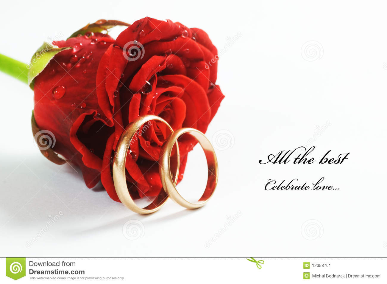 Red Rose And Wedding R...
