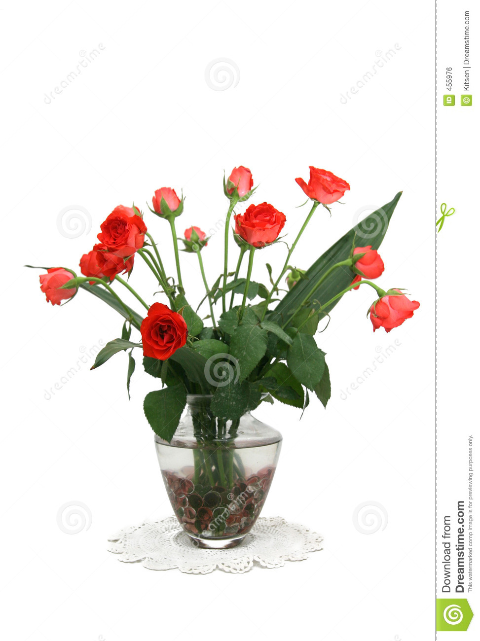 Download Red roses stock photo. Image of beads, water, white, flowers - 455976