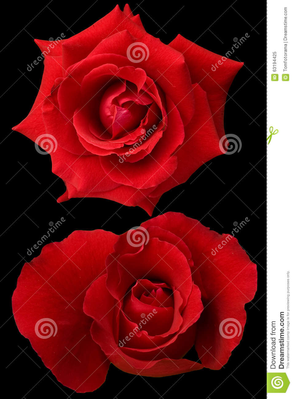 Red roses on black backgroundbeautiful flowerslove stock image red roses on black backgroundbeautiful flowerslove izmirmasajfo