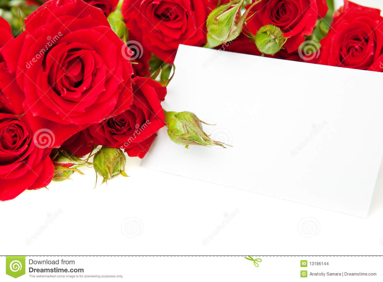 Red Roses And Blank Invitation Card Photo Image 12199990 – Blank Invitation Card