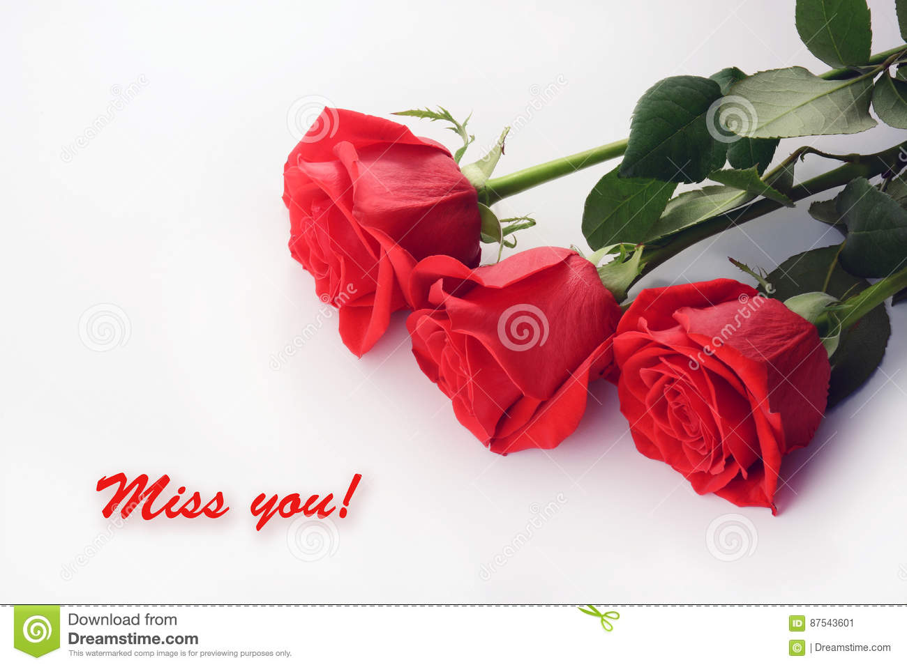 Miss You Card Flowers Stock Photos 56 Images