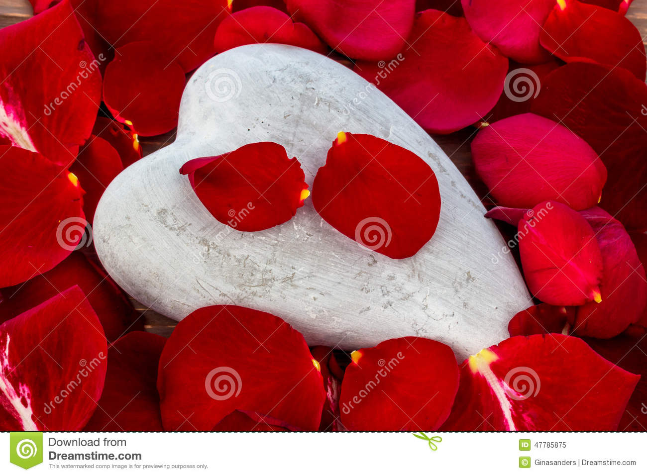 Red Roses With Heart Love For Valentine S Day Stock Image Image