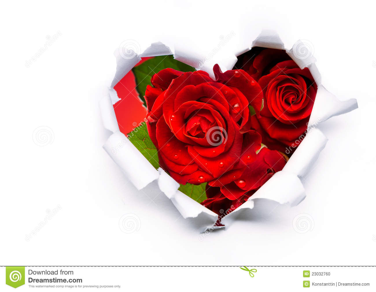 Red Roses And Paper Heart On Valentine Day