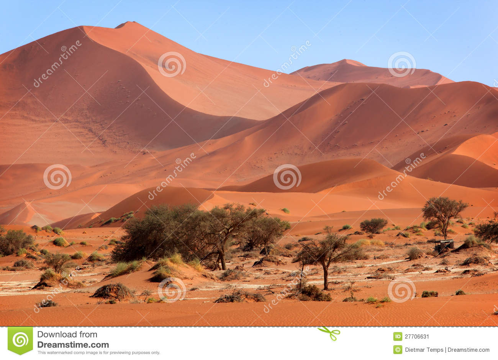 Desert Landscape Plans