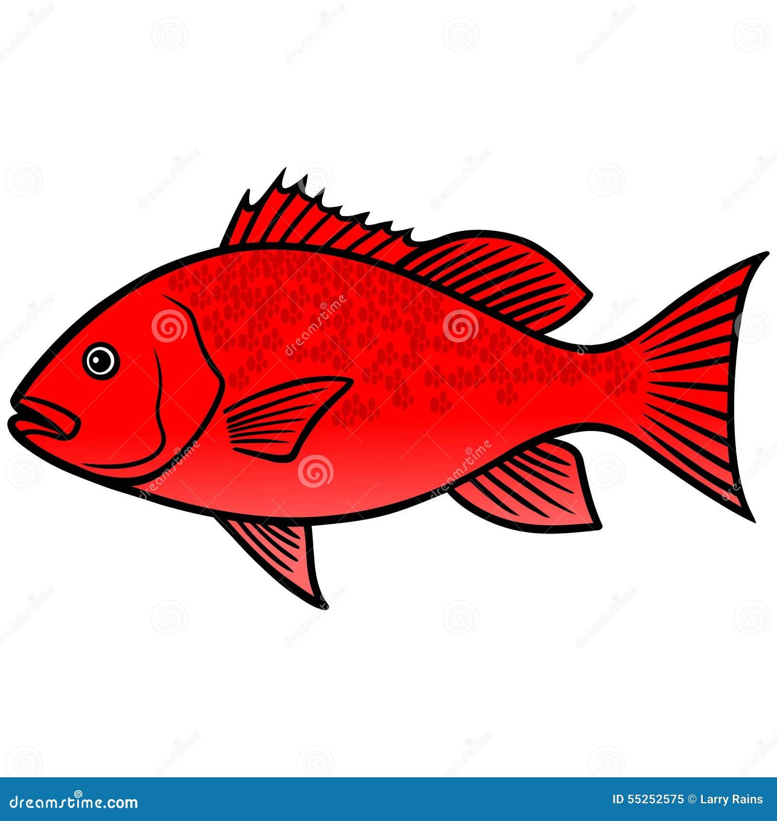 Red Snapper Fish stock vector. Illustration of cartoon - 55252575