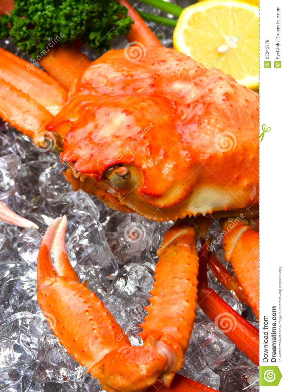 Pictures Of Red Snow Crab 114