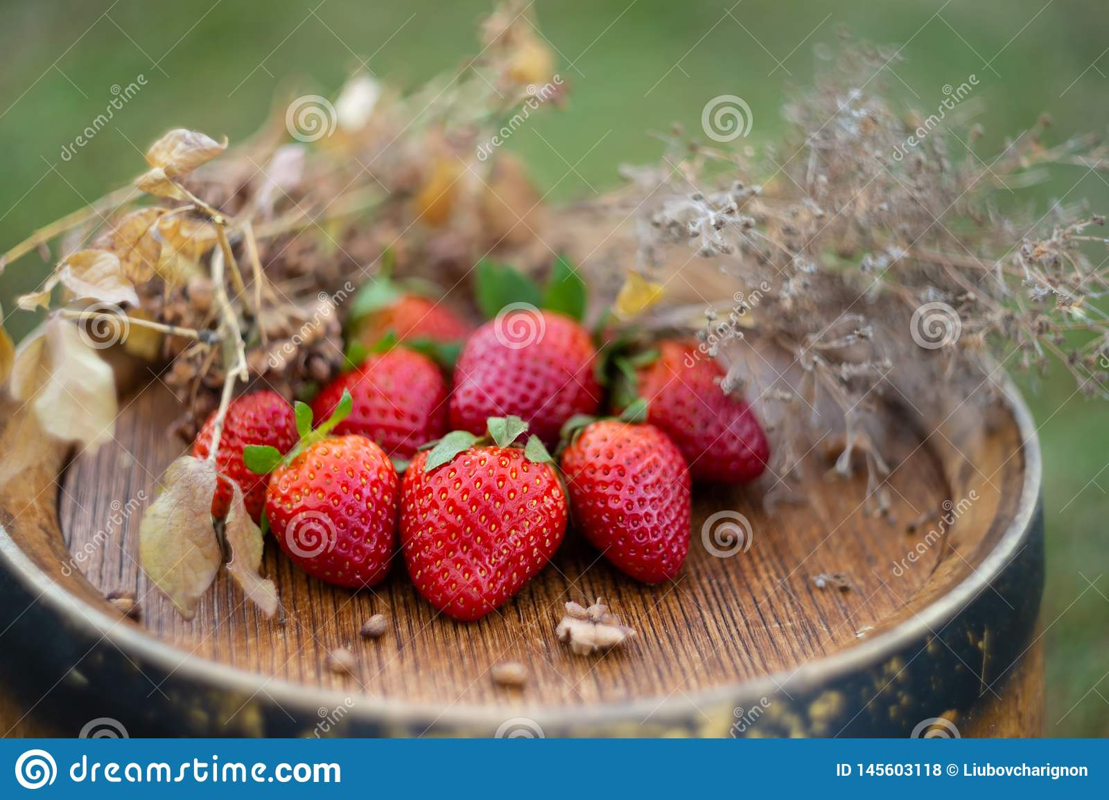 Red strawberries and dry grass on a wooden wine barrel
