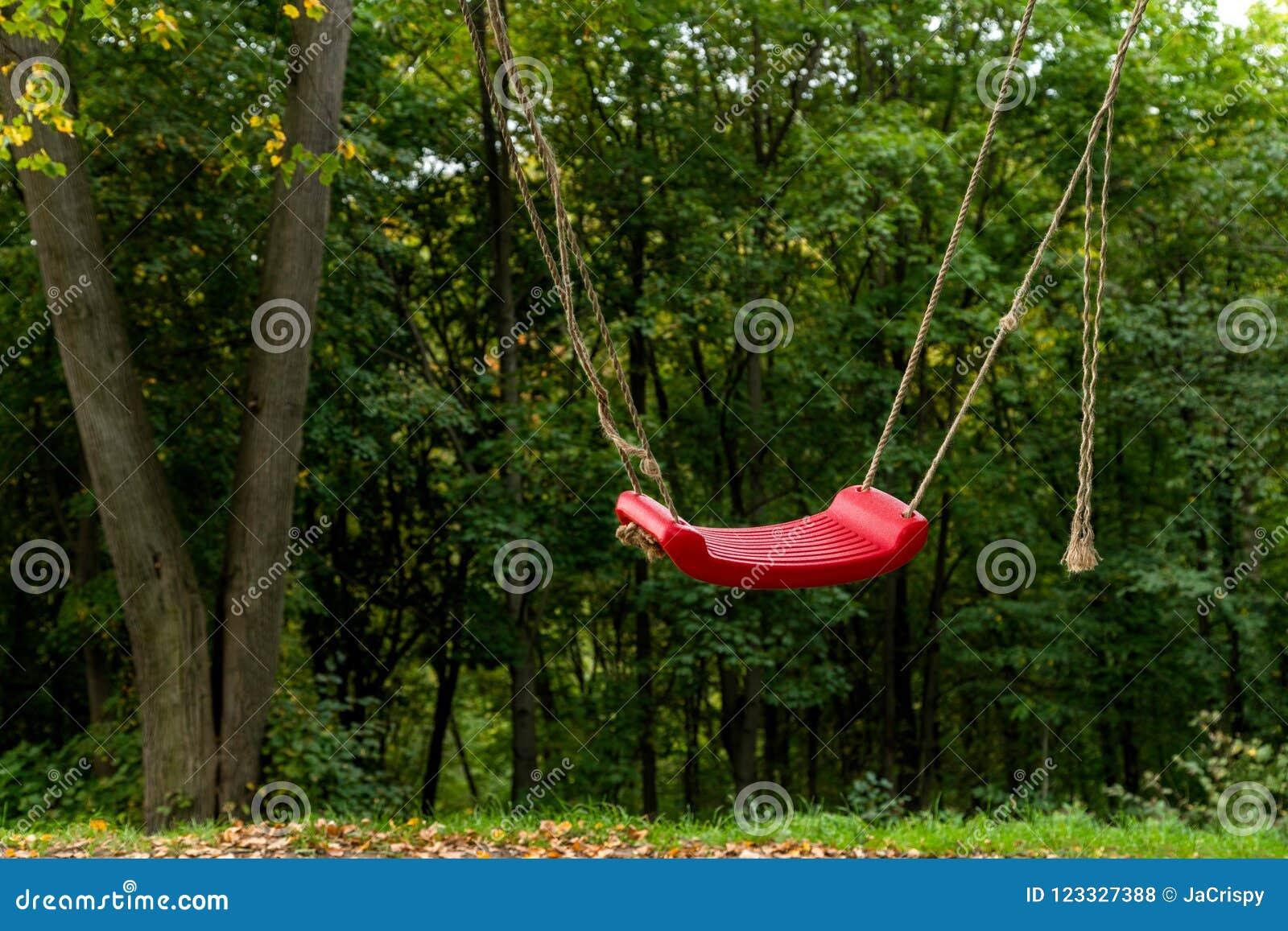 Red Swings In Between Two Trees In The Woods Fun Outdoor