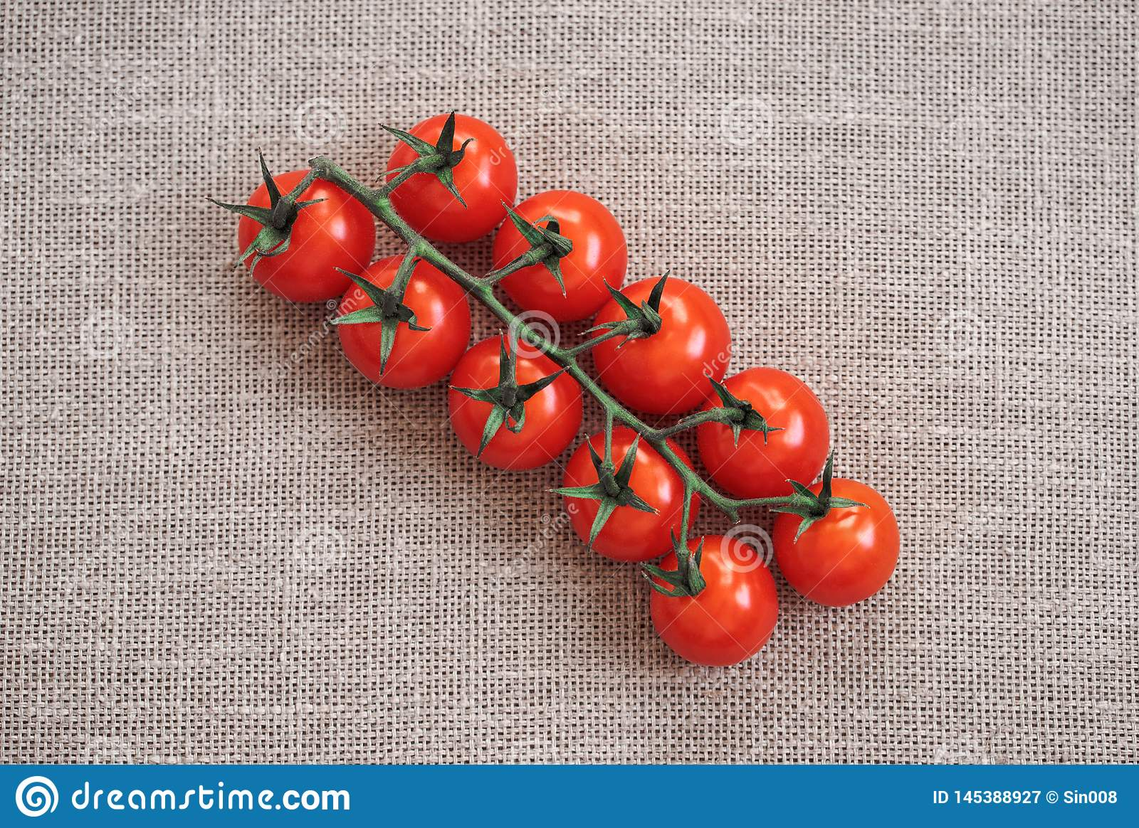 Red tomato on beige background. Cherry tomato on a green branch is on the burlap. The view from the top