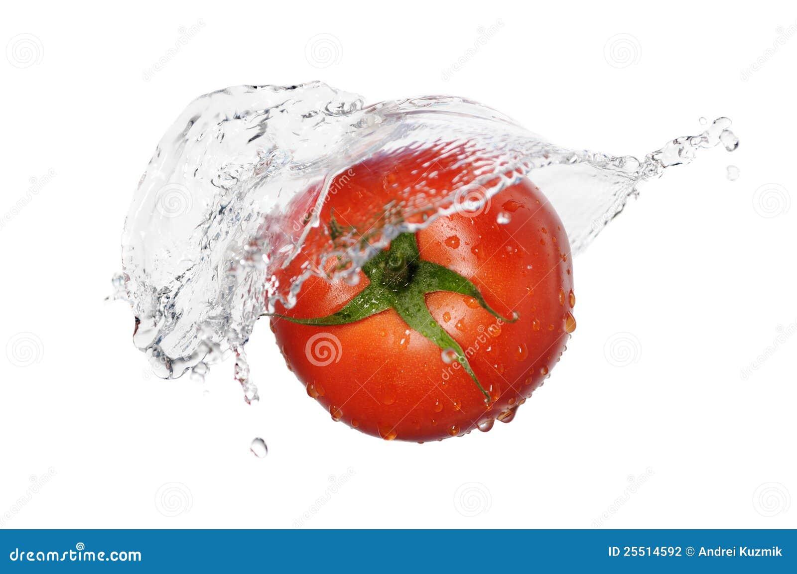 red tomato splash stock photography image 25514592