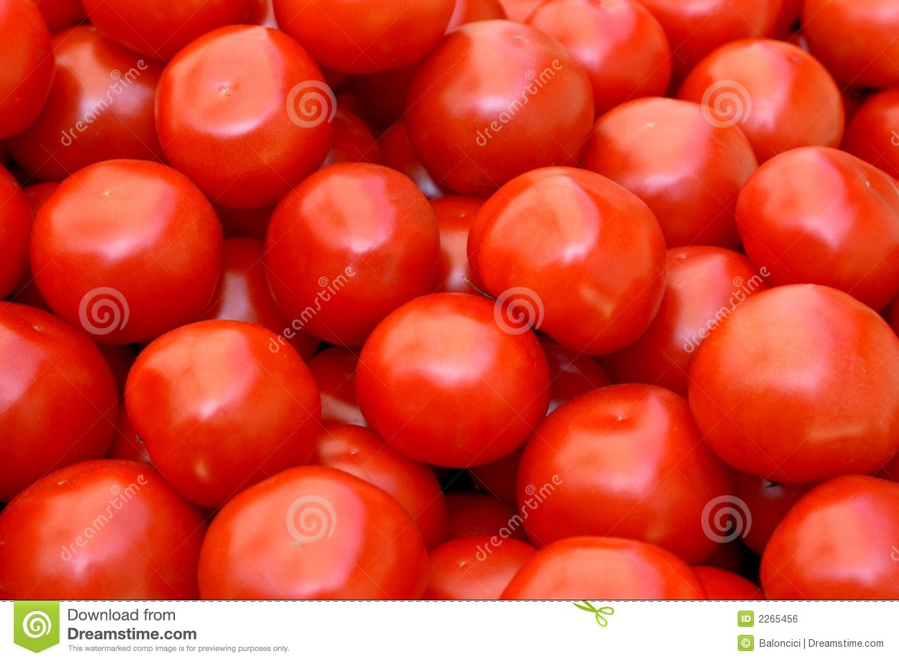 Red Tomatoes Royalty Free Stock Image - Image: 2265456