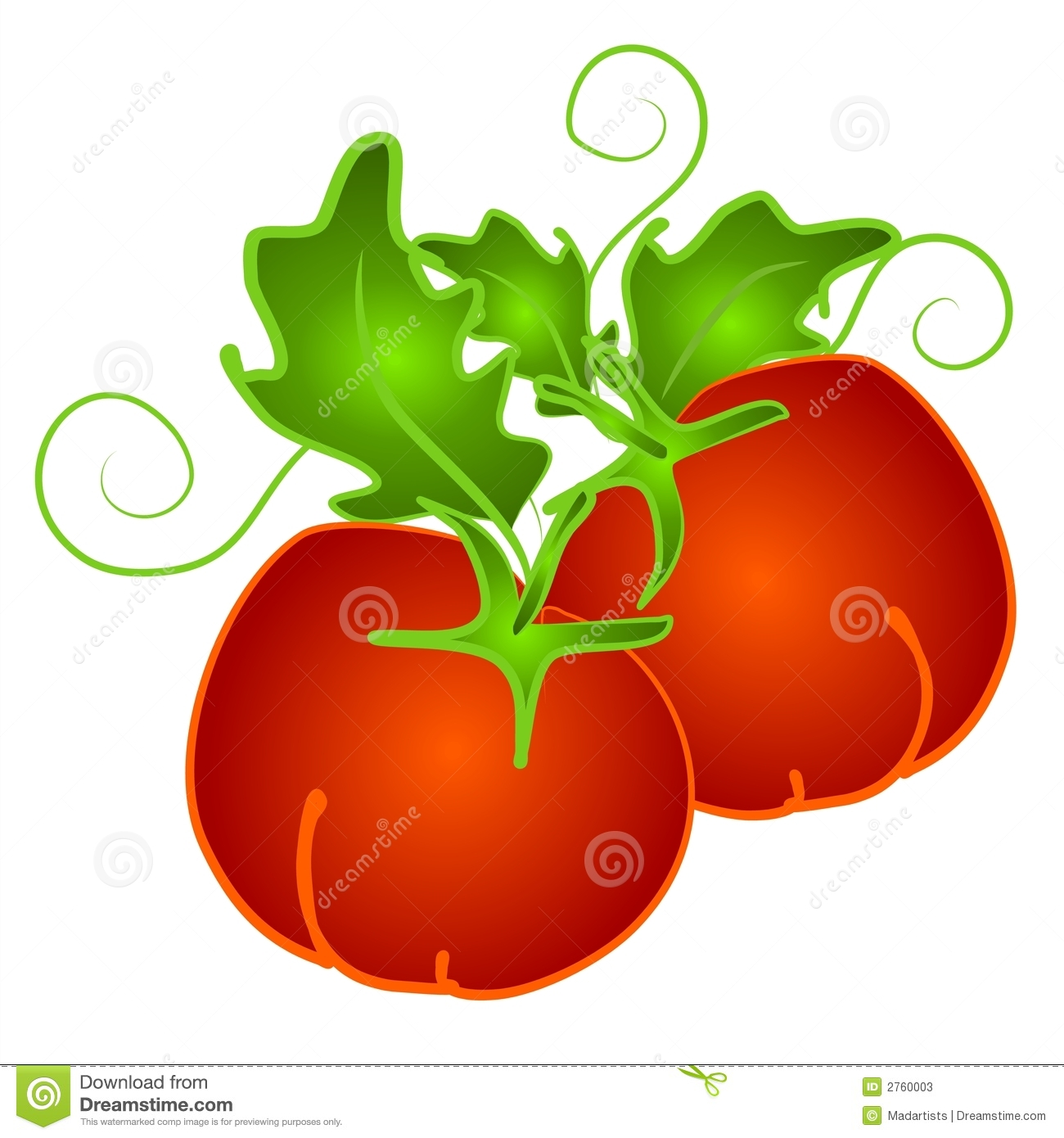 couple of red tomatoes on a tomato vine in rich gradient colors set ...