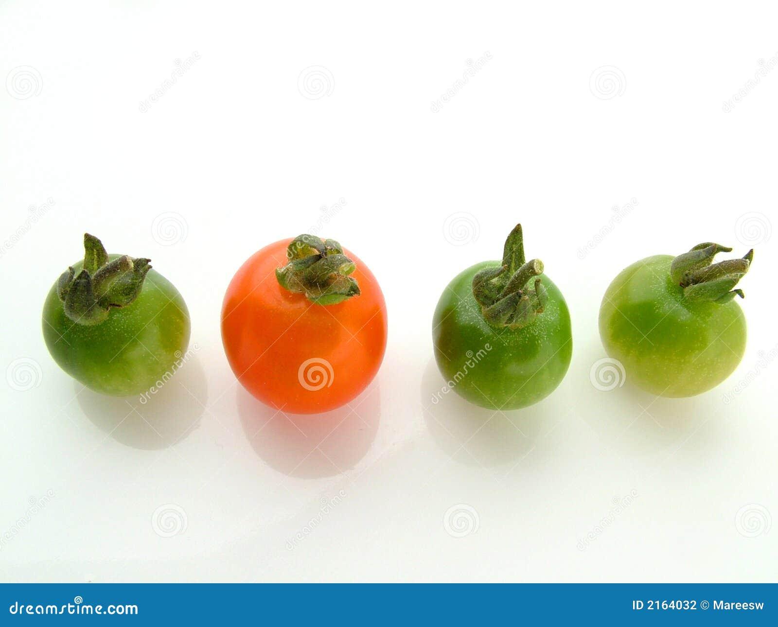 Red tre för green en