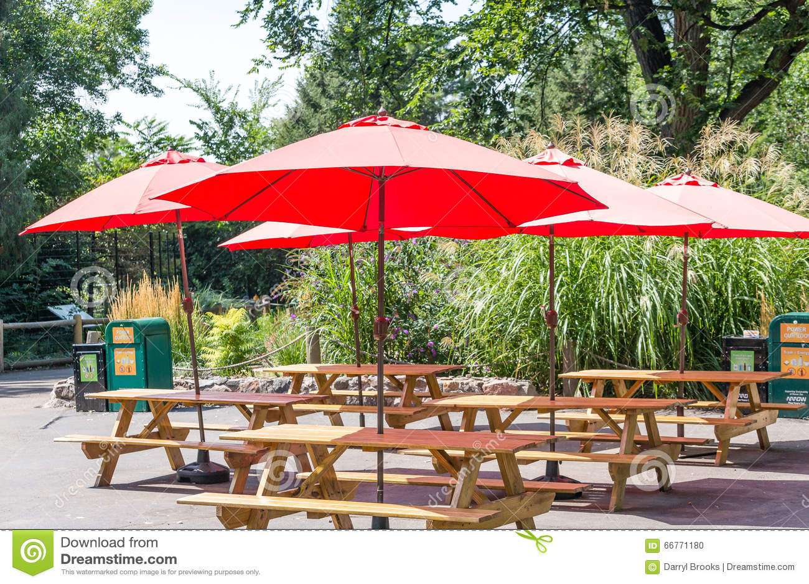 Elegant Red Umbrellas Over Wood Picnic Tables