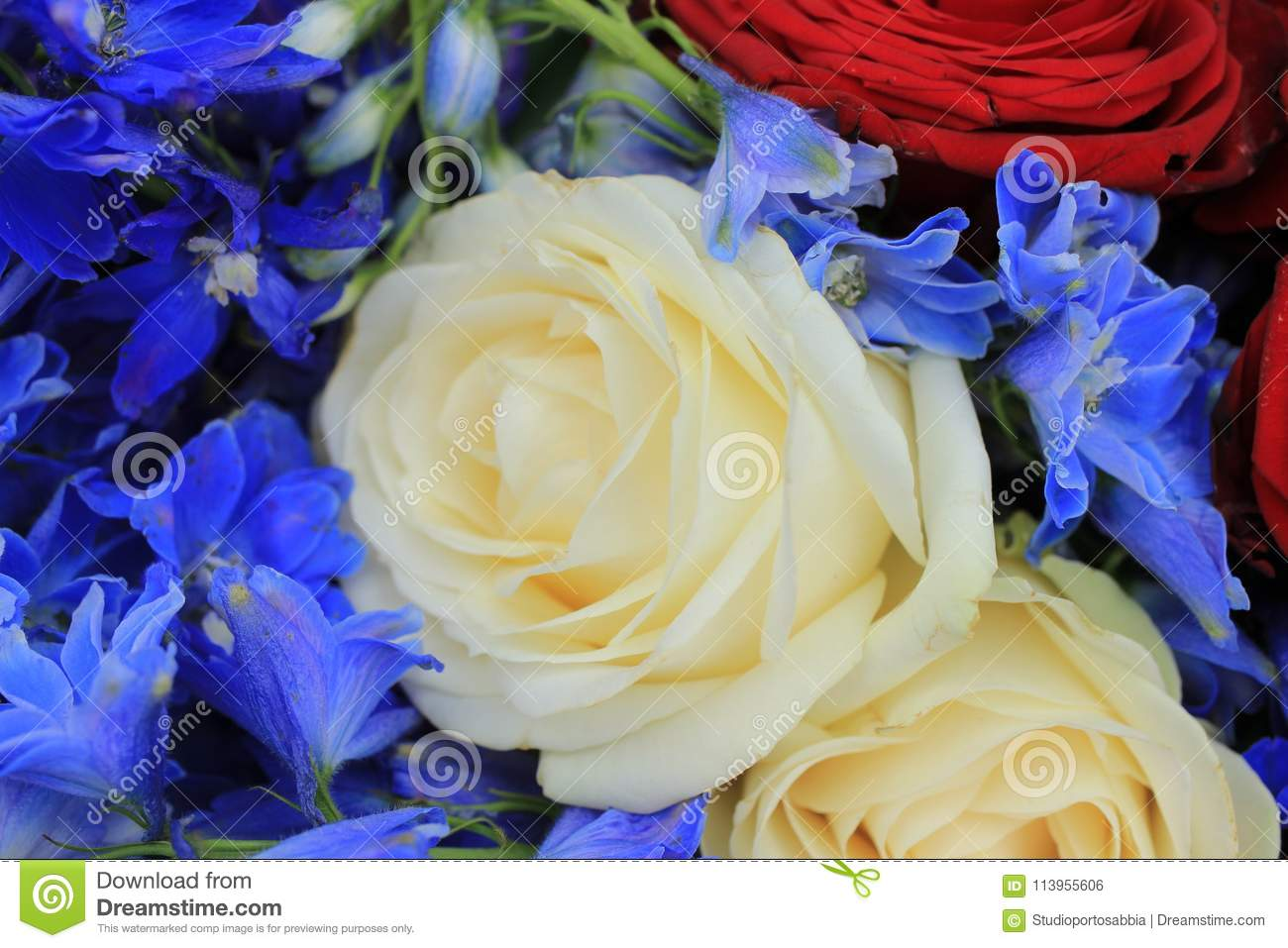 Red white and blue wedding flowers stock photo image of blue download red white and blue wedding flowers stock photo image of blue bouquet mightylinksfo