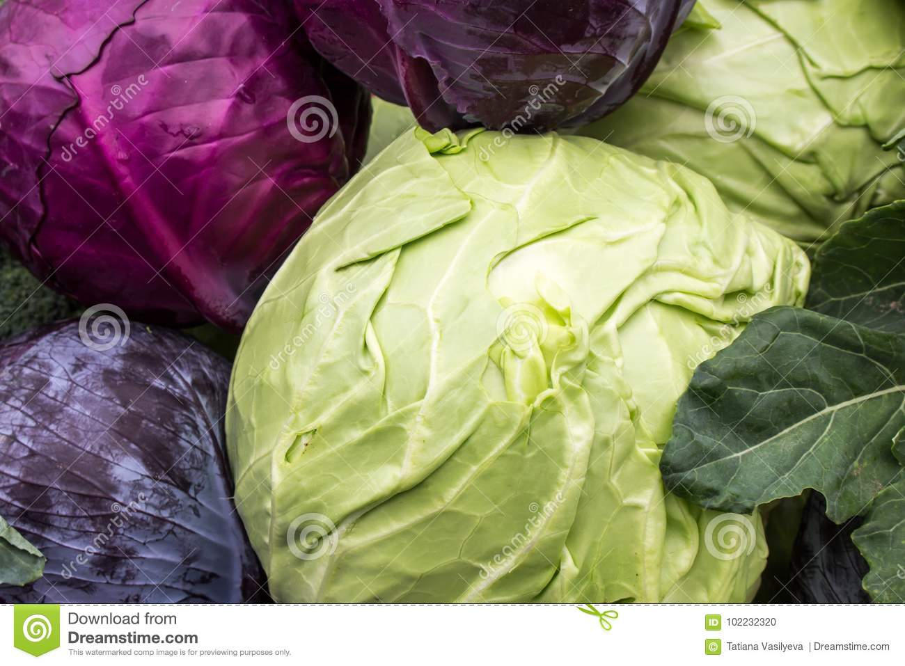 What is useful for cabbage