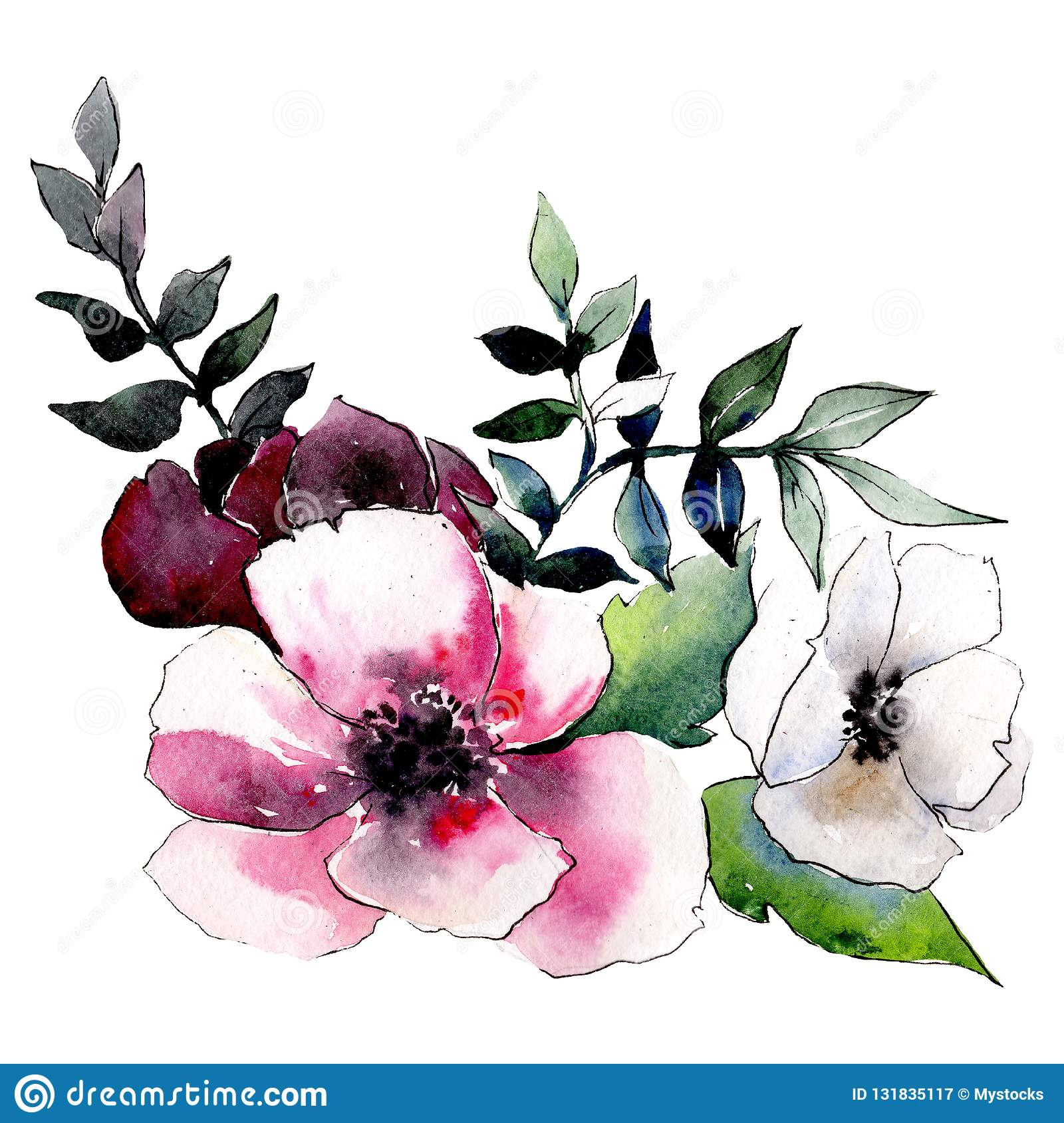 Red And White Flowers Isolated Flower Illustration Element Background Set Watercolour Drawing Aquarelle Bouquet Stock Illustration Illustration Of Fall Element 131835117