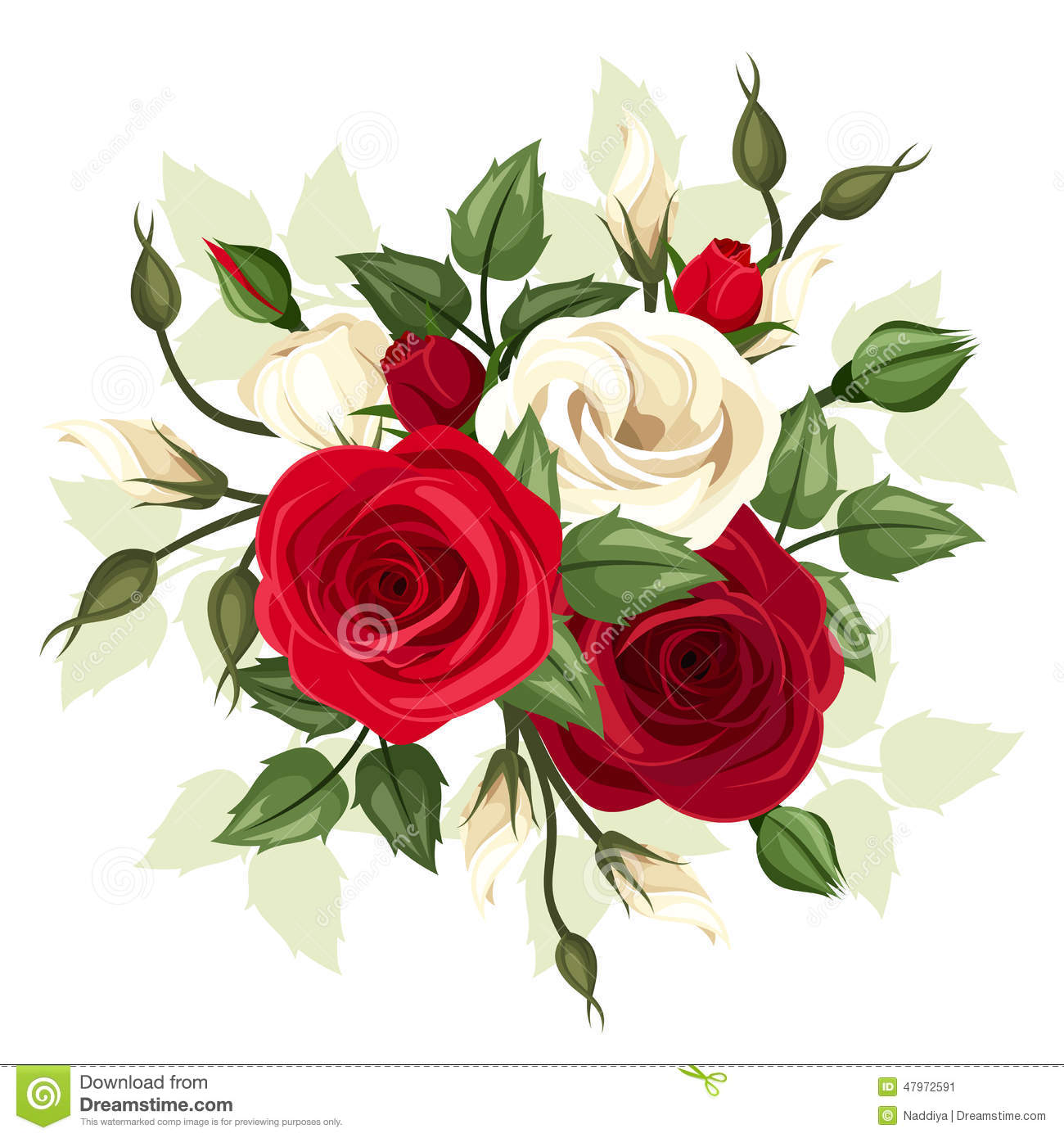 Red And White Roses And Lisianthus Flowers. Vector ... - photo#32