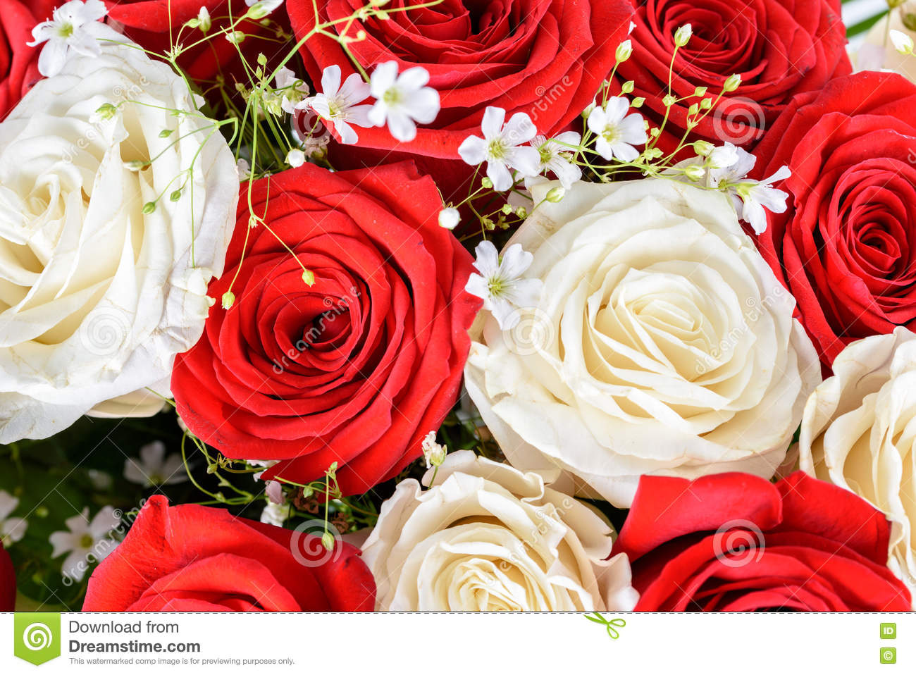 Red And White Roses Wedding Bouquet Stock Image Image Of Romance
