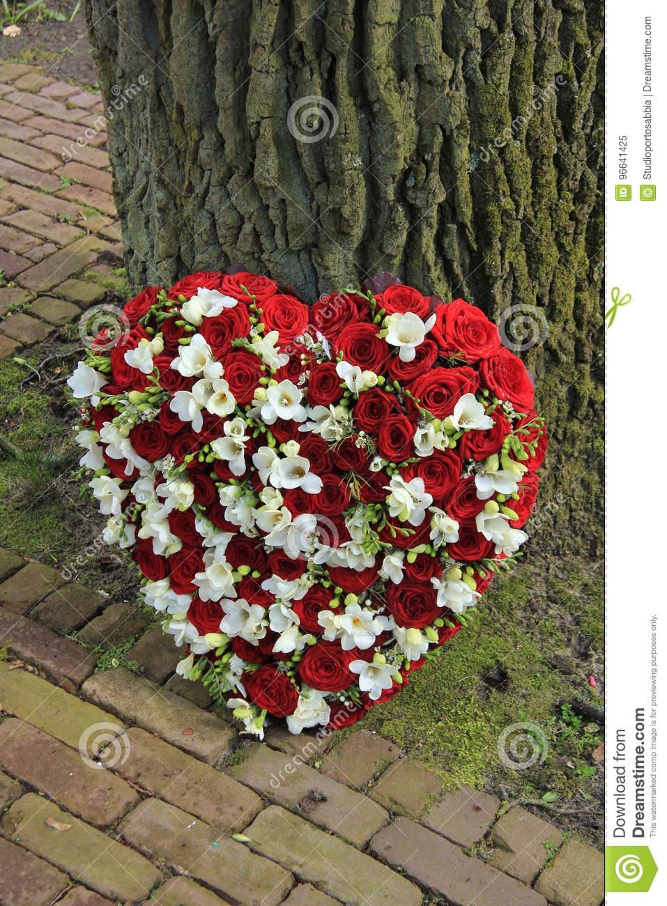 Red and white sympathy flowers near a tree stock image image of red and white sympathy flowers near a tree izmirmasajfo Image collections