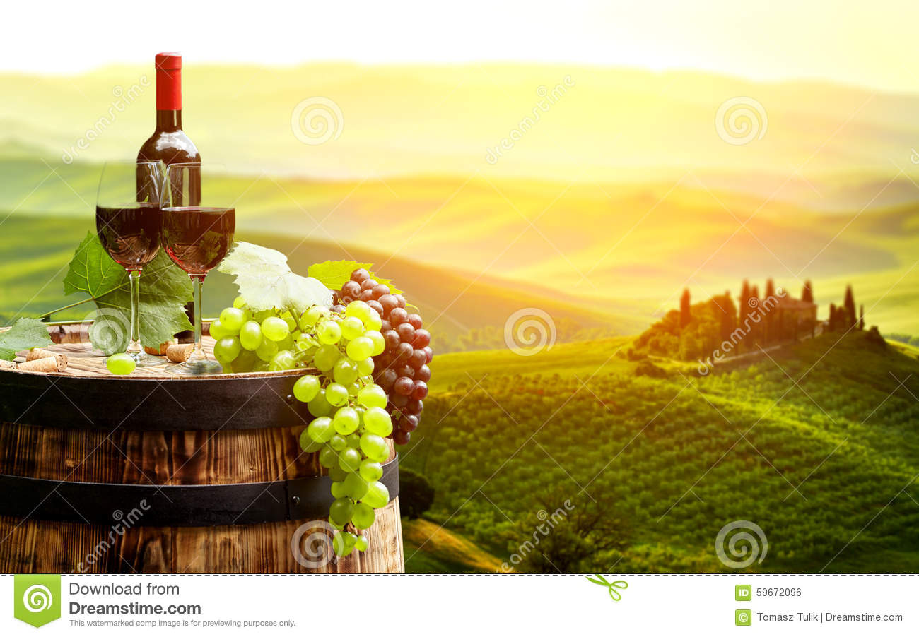 Red wine with barrel on vineyard in green tuscany stock for Green italy
