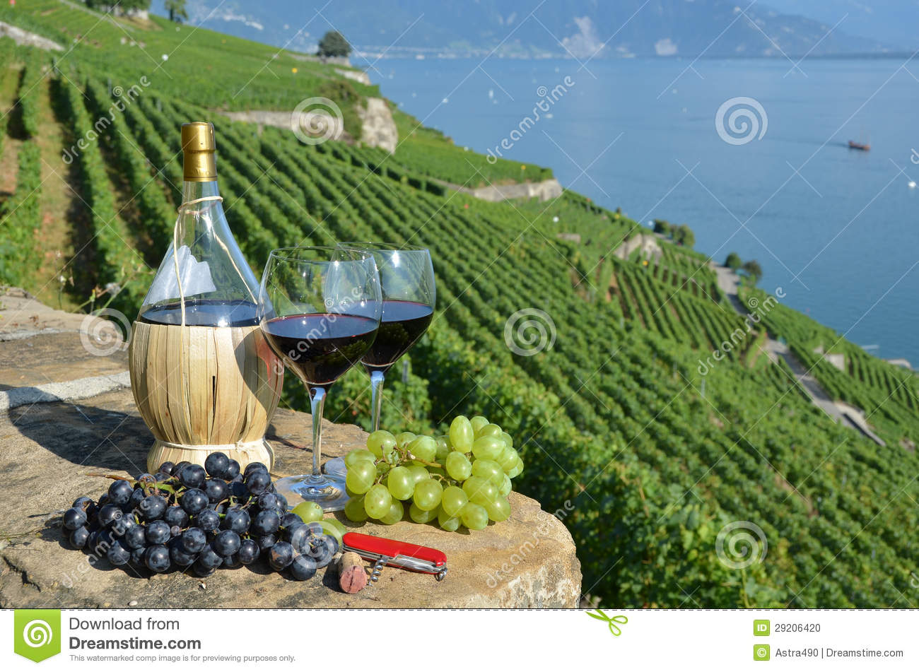Red wine and grapes on the terrace of vineyard in lavaux for On the terrace